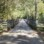 Improvements to the Longleaf Trace
